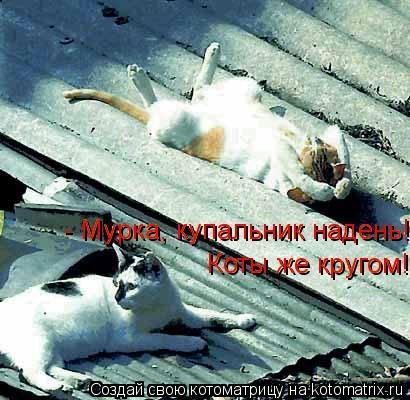 kotomatritsa_O6 (410x400, 102Kb)