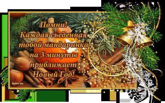 Попкорн (флудильня) - Том IX - Страница 6 107703705_pomni_sedennaya_mandarinka