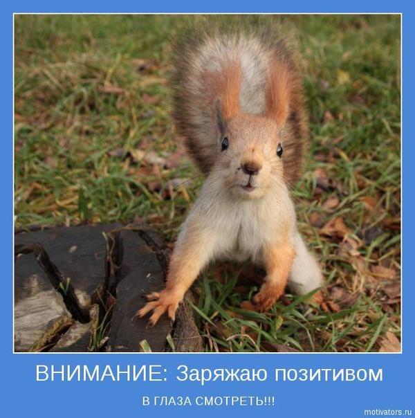 1364970724_www.radionetplus.ru-8 (600x604, 172Kb)
