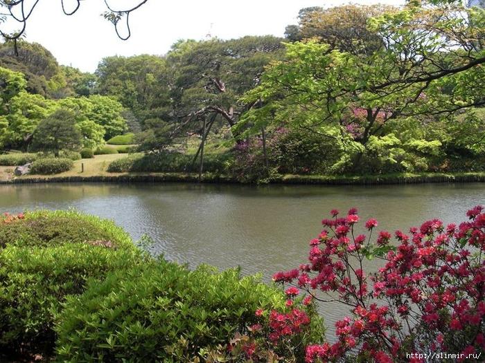 Сад Рикугиэн Rikugien garden (яп. 六義園 Рикугиэн) 20 (700x525, 399Kb)