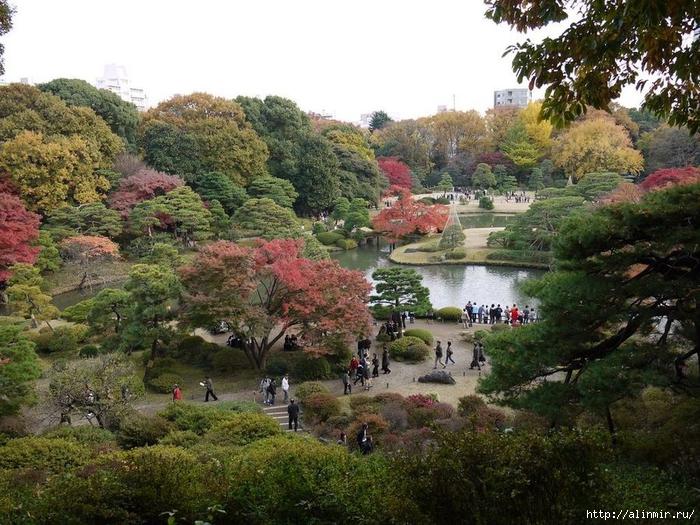 Сад Рикугиэн Rikugien garden (яп. 六義園 Рикугиэн) 17 (700x525, 354Kb)