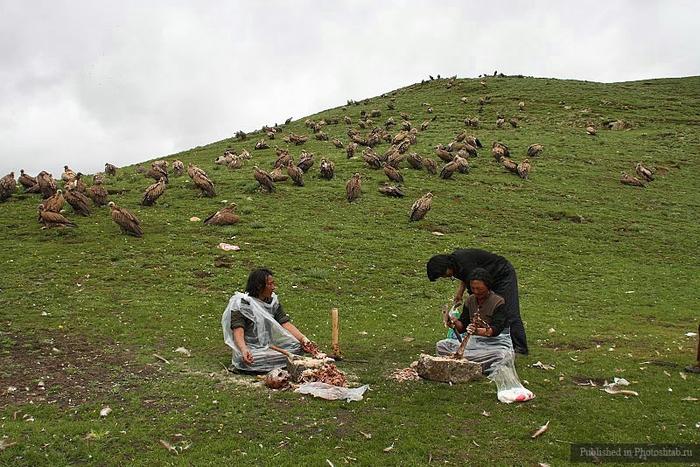обряд небесного погребения тибет 14 (700x467, 293Kb)