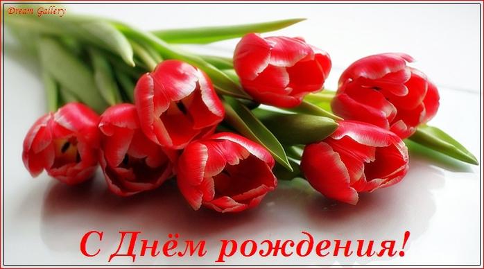 105572486_dr__3_ (698x388, 193Kb)
