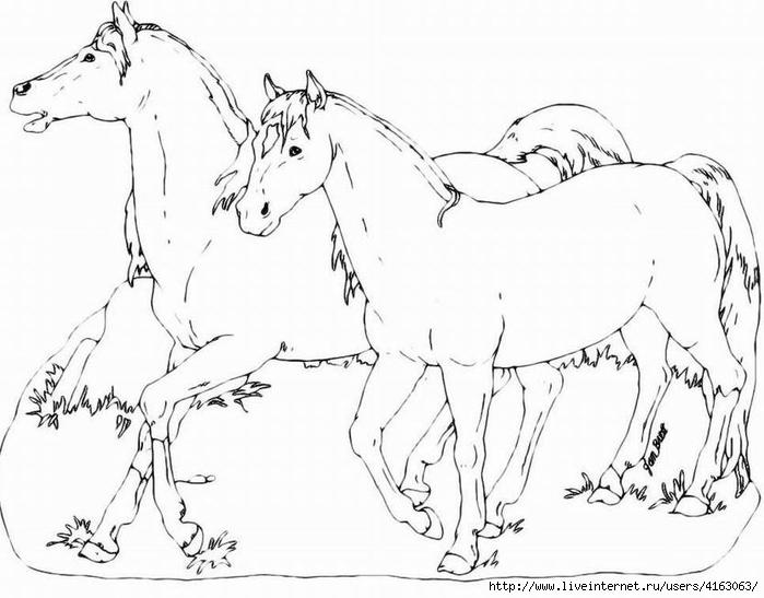 horses (700x547, 174Kb)