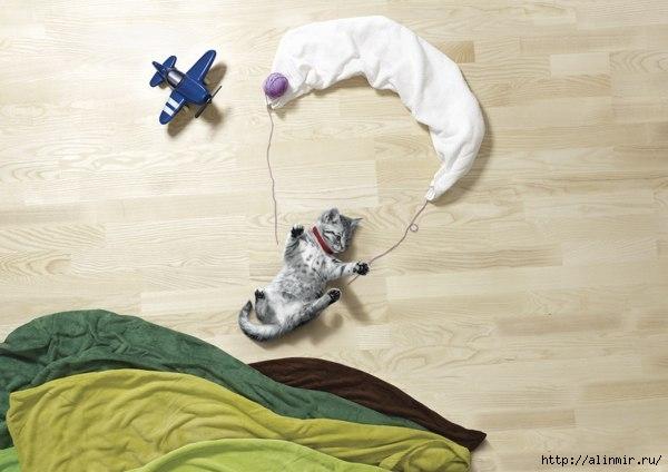 собачья жизнь4 (600x424, 117Kb)
