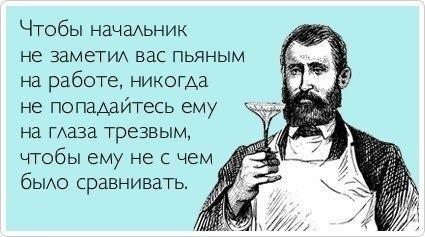 smeshnie_kartinki_138611926922 (425x237, 75Kb)
