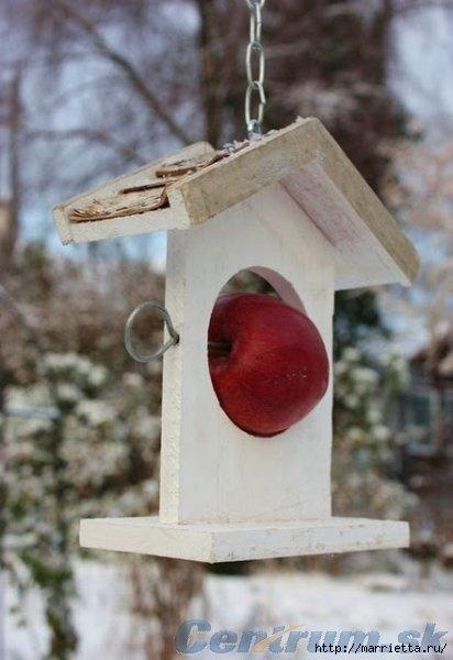 Чем кормить птиц и СКВОРЕЧНИК своими руками (42) (412x600, 114Kb)