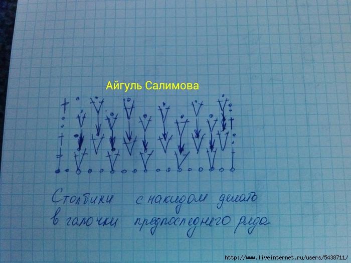 IMG_20131209_042923 (700x524, 270Kb)