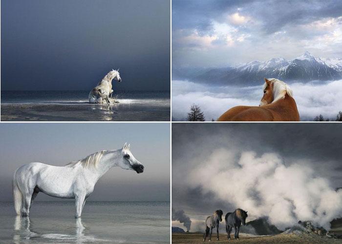 3925073_Horsei_0 (700x500, 71Kb)