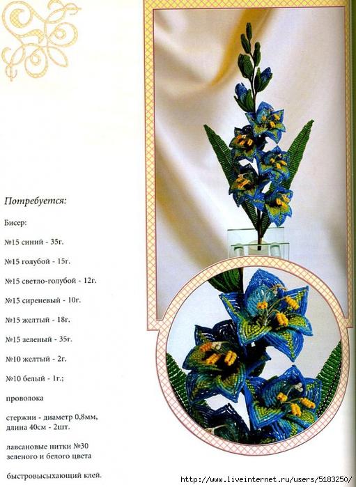5183250_gladiolys1 (511x700, 279Kb)