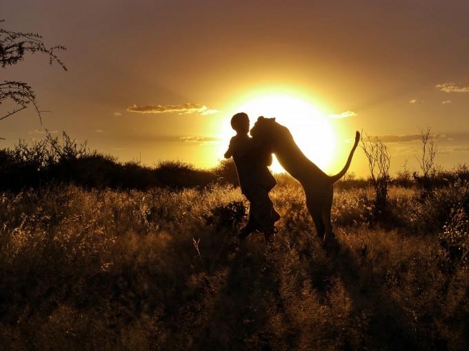 дикие животные фото 14 (680x509, 163Kb)
