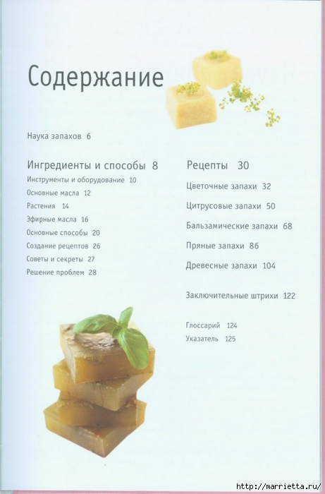 Книга Линды Гэмблин МЫЛО РУЧНОЙ РАБОТЫ (2) (461x700, 145Kb)