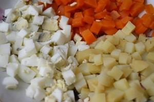 salat-loshad01 (300x200, 76Kb)