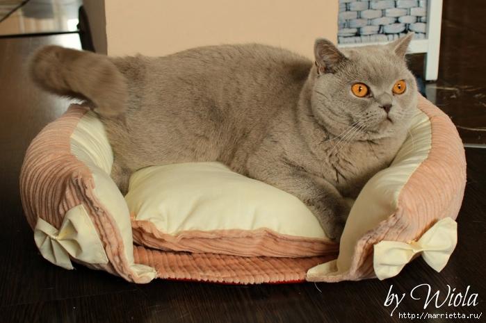 Как сшить кроватку для кошки. Мастер-класс (11) (700x465, 238Kb)