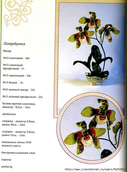 5183250_orhideya (515x700, 288Kb)