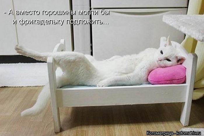 kotomatritsa_Ea (700x466, 171Kb)