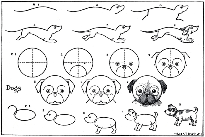 Draw-Dogs-GraphicsFairysm1 (700x467, 177Kb)