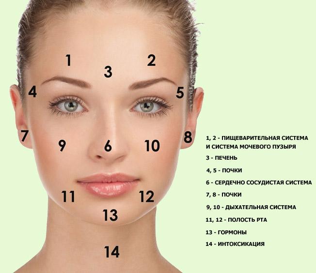 как быстро меняется кожа человека на лице