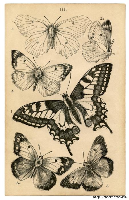 Декорирование елочных шаров обрывками книжных страниц и бабочками (2) (451x700, 311Kb)