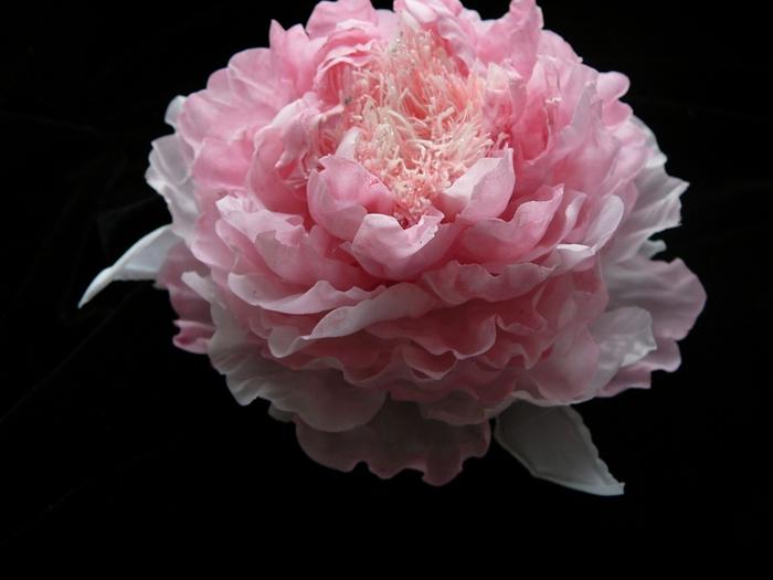 Цветок пиона из ткани