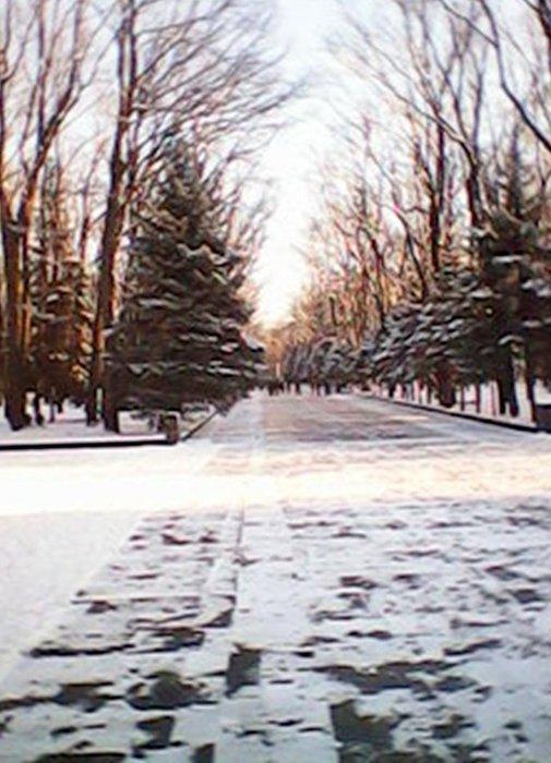 Путь к Мемориалу./1387030949_DSC_0000511 (505x700, 74Kb)