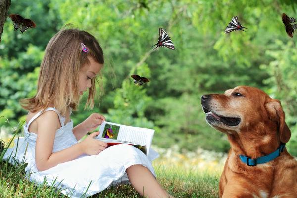 Собаки узнают лица на фото (600x400, 64Kb)