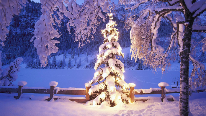 beautiful-lit-tree-in-the-winter-wilderness-255770 (700x393, 412Kb)