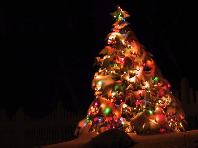 New_Year_wallpapers_Elegant_Tree_019210_29 (640x480, 245Kb)