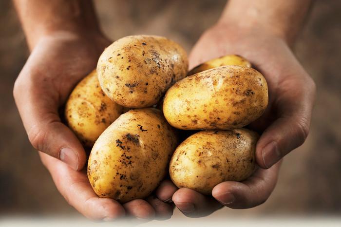 картошка (700x466, 96Kb)