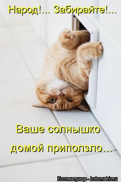 kotomatritsa_cU (400x600, 86Kb)