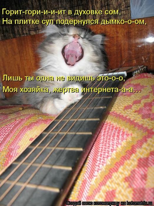 kotomatritsa_YQ (524x700, 304Kb)