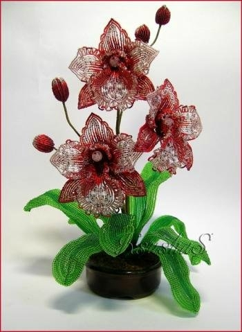 <орхидеи из бисера - Самое
