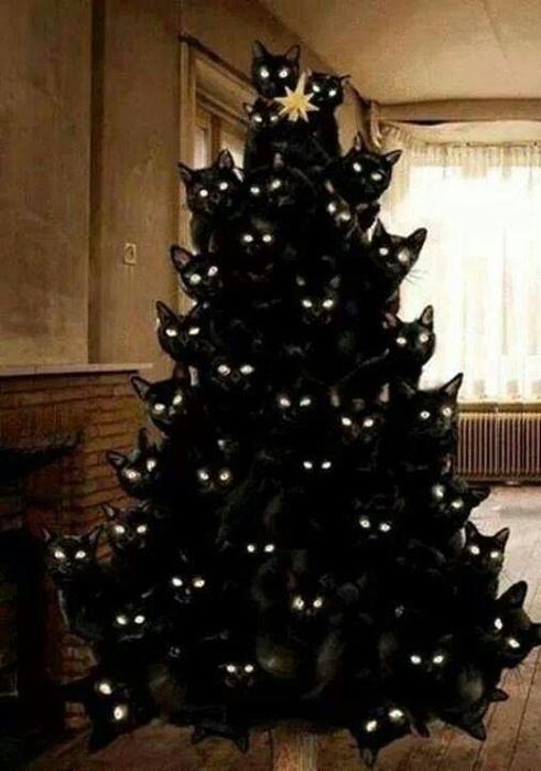 коты и елки1й (491x700, 188Kb)