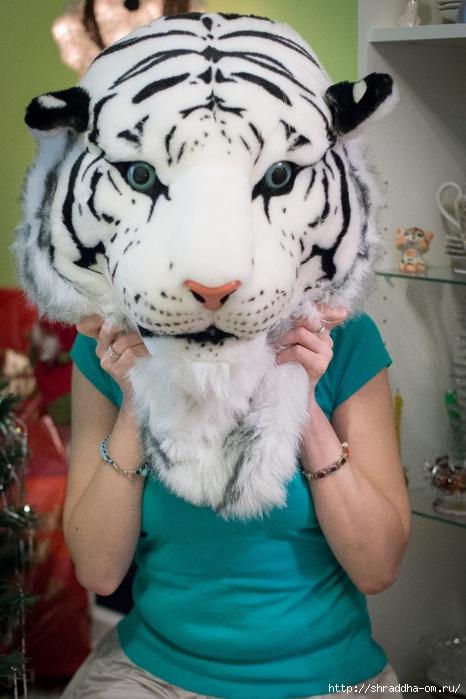 Шрада-Тигр (1) (466x700, 253Kb)