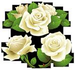 1387999881_0_4dcc4_182172ce_S (150x140, 41Kb)