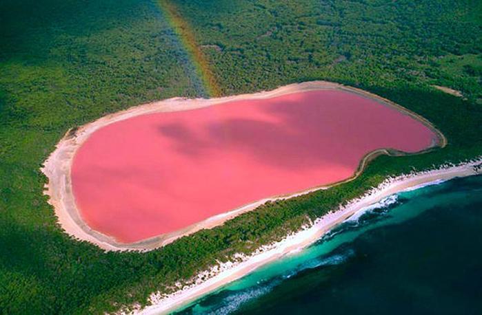 розовое озеро 3 (700x458, 354Kb)