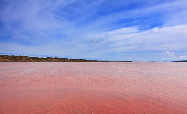 розовое озеро 5 (640x390, 228Kb)