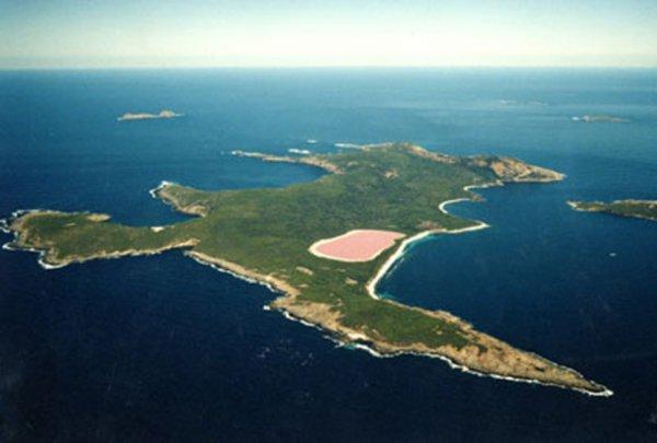 розовое озеро 7 (600x405, 137Kb)