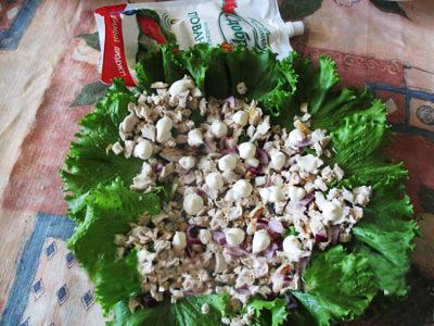 salad-horse-c-03 (400x300, 161Kb)