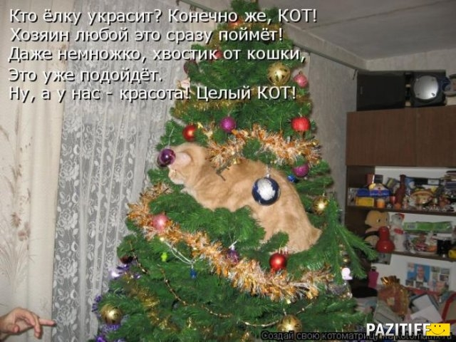 1326053366_kotomatrix_46 (640x480, 195Kb)