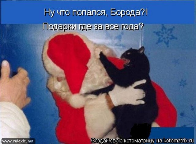kotomatrix_0583 (640x469, 131Kb)