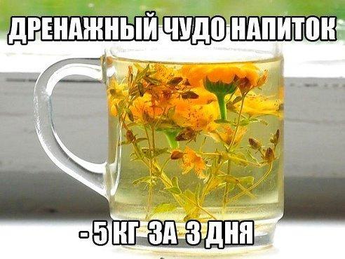5467754_getImage_53 (492x369, 43Kb)