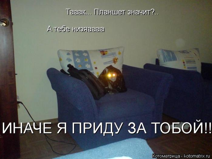 Котоматрица - 2013 kotomatritsa_Lv (700x524, 201Kb)