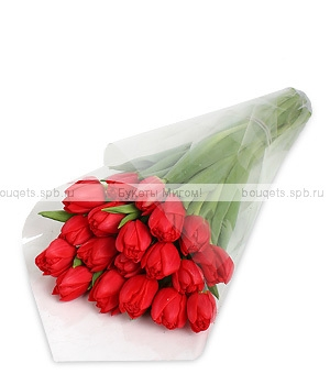 красных тюльпанов.800x600w (300x350, 41Kb)