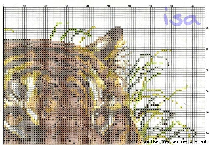 правая верхняя часть схемы (700x482, 426Kb)