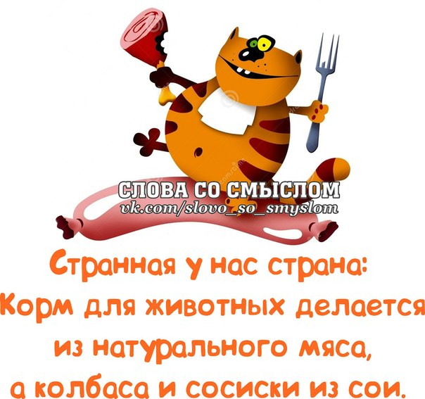 http://img1.liveinternet.ru/images/attach/c/9/108/77/108077063_large_4.jpg