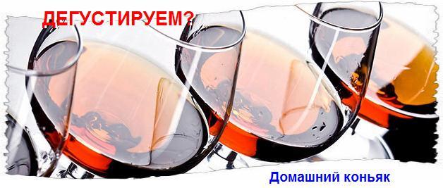 1207817_konyak_doma (628x267, 34Kb)