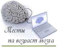 mozgi-190x1491-190x155_min (190x155, 5Kb)