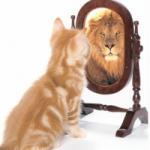 25 цитат, стимулирующих уверенность в себе