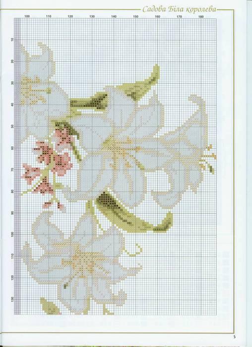 белая лилия2 (508x700, 57Kb)
